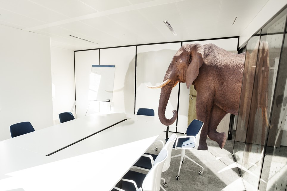 Elephant in the room - senior workers